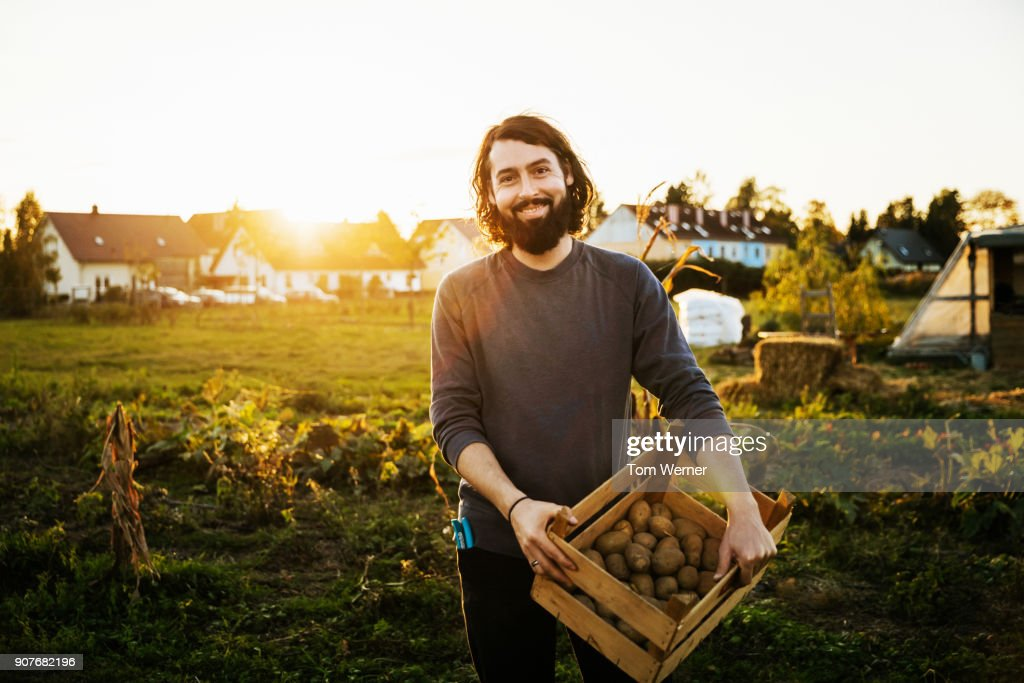 Portrait Of Urban Farmer Holding Crate Of Potatoes : Stock Photo