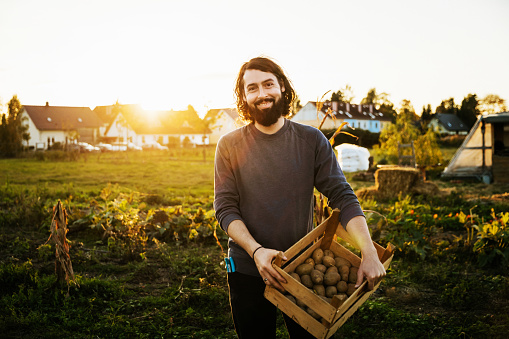 Portrait Of Urban Farmer Holding Crate Of Potatoes - gettyimageskorea