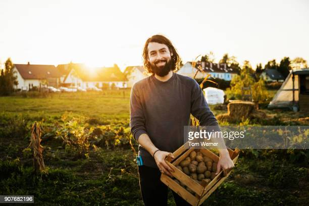 portrait of urban farmer holding crate of potatoes - gemüsegarten stock-fotos und bilder