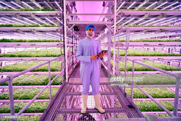 portrait of vertical farming specialist with digital tablet - agriculture stock pictures, royalty-free photos & images