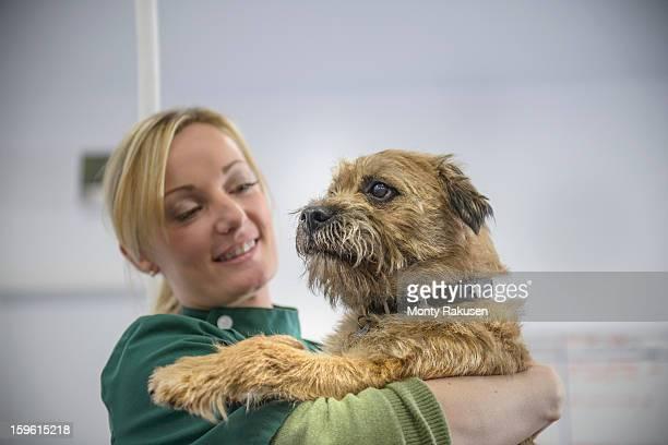 portrait of vet holding dog in veterinary surgery - alleen één mid volwassen vrouw stockfoto's en -beelden