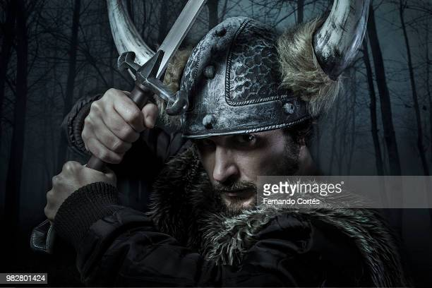 portrait of viking man - viking stock photos and pictures