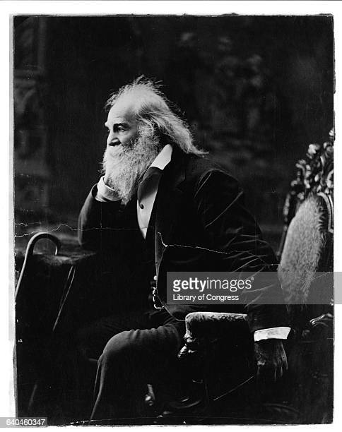 walt whitman an omnisexual poet Walt whitman, sometimes called the oscar wilde of the americas or the the gay father of american poetry, was a dirty old man who advanced dangerous ideas like appreciating nature and studying poetry with a straight face.