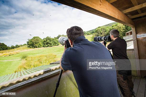 Portrait of wildlife photographers with tripodmounted Canon DSLR cameras taking pictures of birds in flight at the Gigrin Farm Red Kite Centre near...