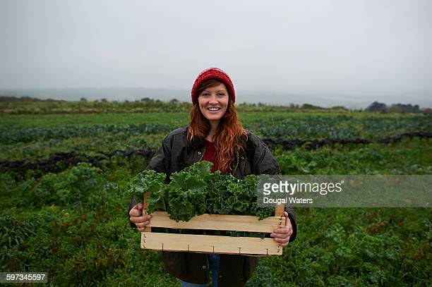 portrait of woman holding box of kale on farm. - organic farm stock pictures, royalty-free photos & images