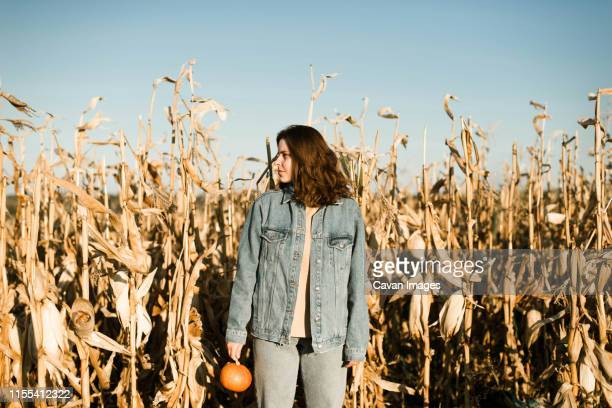 portrait of woman holding pumpkin in the middle of a corn field - scary pumpkin faces stock photos and pictures