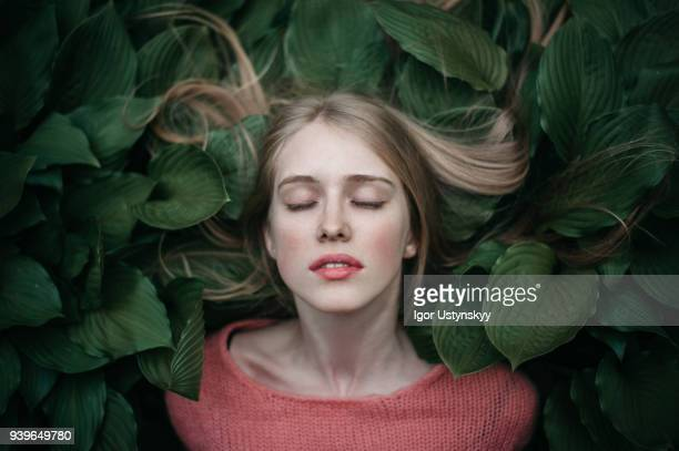 portrait of woman laying on the green leaves - beleza natural imagens e fotografias de stock