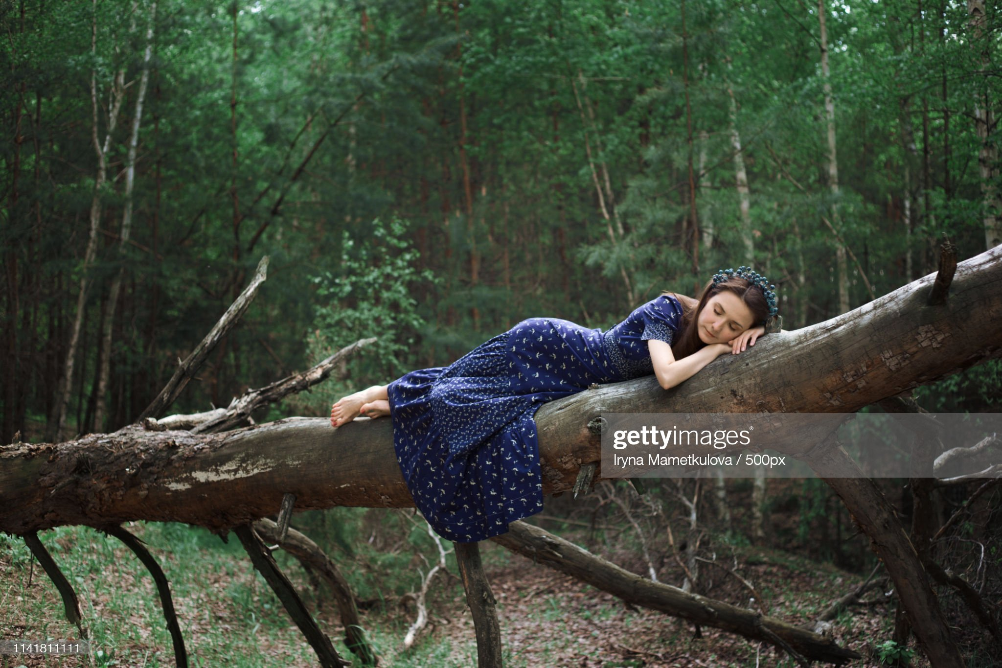 https://media.gettyimages.com/photos/portrait-of-woman-lying-on-tree-picture-id1141811111?s=2048x2048