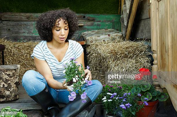 portrait of woman potting  - horticulture stock pictures, royalty-free photos & images