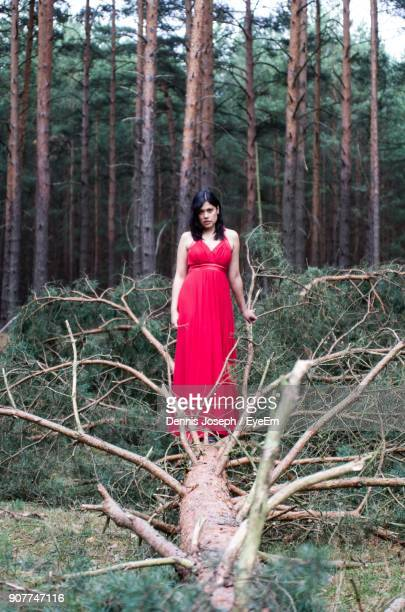 Portrait Of Woman Standing On Fallen Tree In Forest