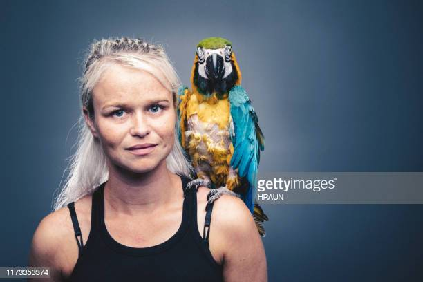 portrait of woman with injured gold and blue macaw - macaw stock pictures, royalty-free photos & images