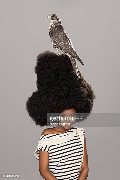 Portrait of woman with large afro, falcon on head