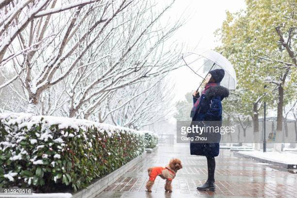 portrait of woman with umbrella and pet standing in park