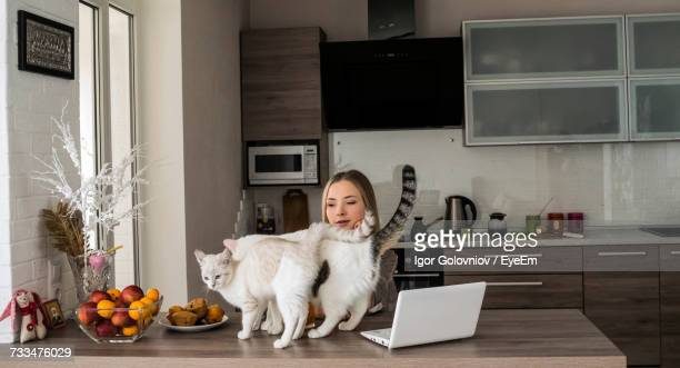 portrait of woman working at home with cats - igor golovniov stock pictures, royalty-free photos & images
