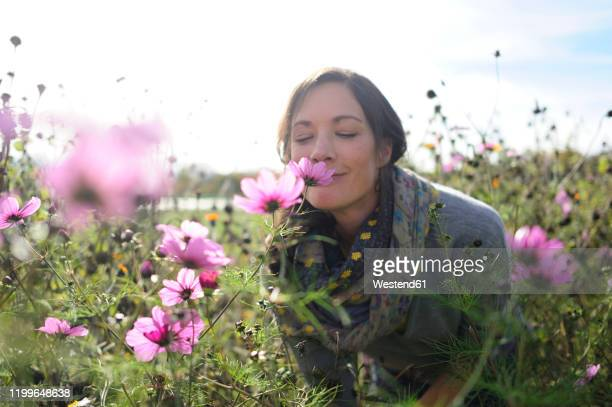 portrait of women smelling on wild flower, flower meadow - sinneswahrnehmung stock-fotos und bilder