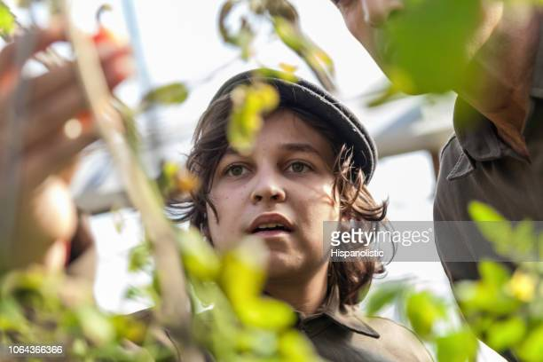 Portrait of young boy at a greenhouse learning about the different plants with his father