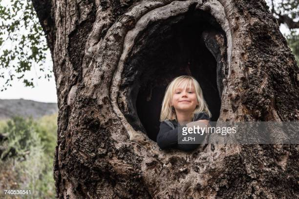 Portrait of young boy, sitting in hollow of tree, smiling