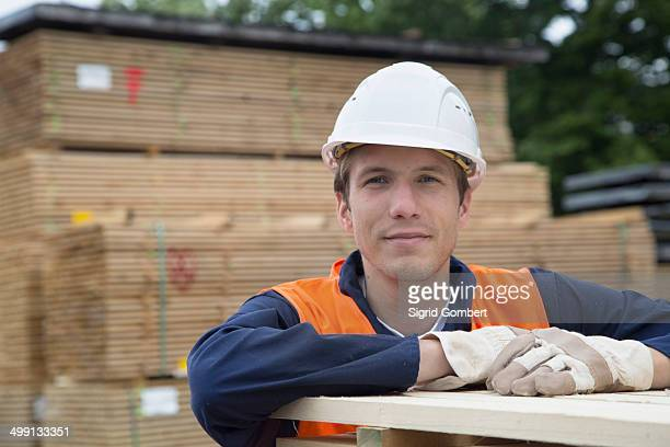 portrait of young male worker in timber yard - sigrid gombert stock pictures, royalty-free photos & images