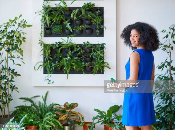 portrait of young mixed race female tending to planted wall in a sustainable modern office. - sleeveless dress stock pictures, royalty-free photos & images