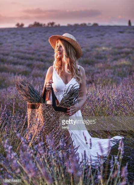 retrato de una joven disfrutando del campo de lavanda al atardecer en provenza, francia - julio fotografías e imágenes de stock