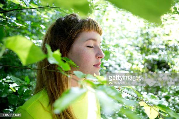 portrait of young woman in the forest - wald stock-fotos und bilder