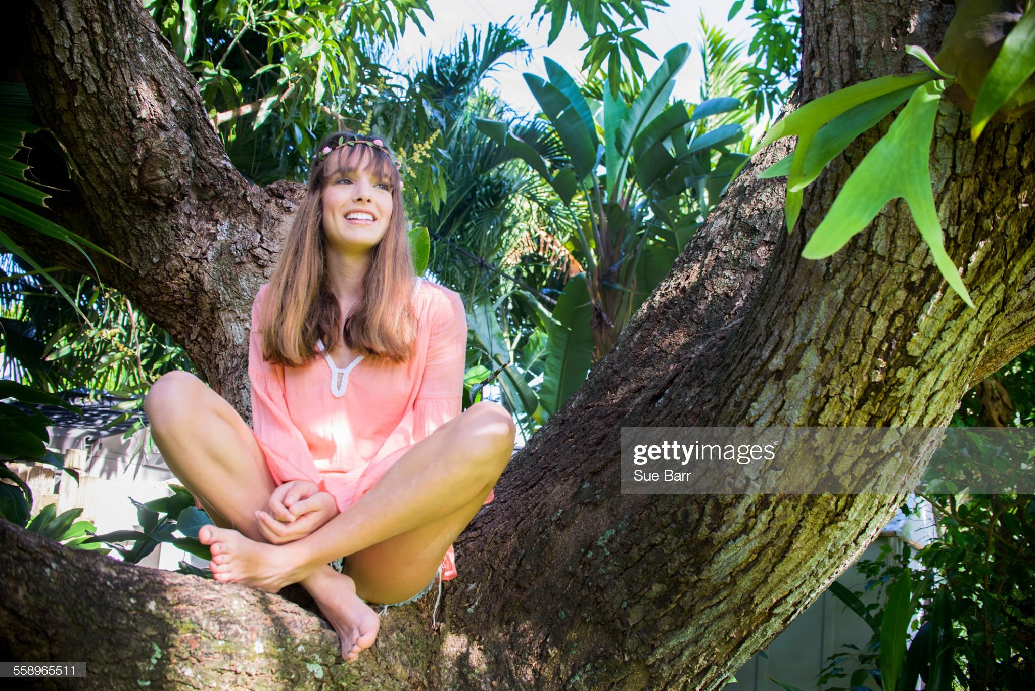 https://media.gettyimages.com/photos/portrait-of-young-woman-looking-out-from-tree-picture-id558965511?s=2048x2048