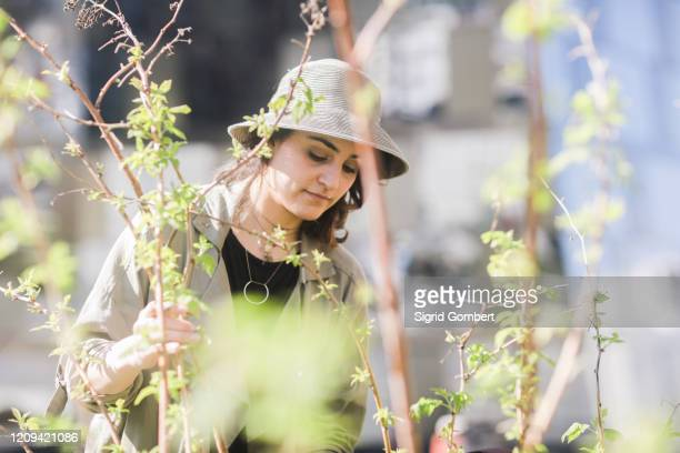 portrait of young woman with brown hair wearing hat, tree with young branches in foreground. - sigrid gombert stock pictures, royalty-free photos & images