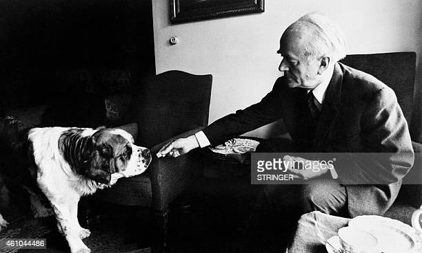 Portrait taken on March 3 1971 shows German architect Albert Speer for the German Reich posing at his home with his dog in Heidelberg Appointed in...