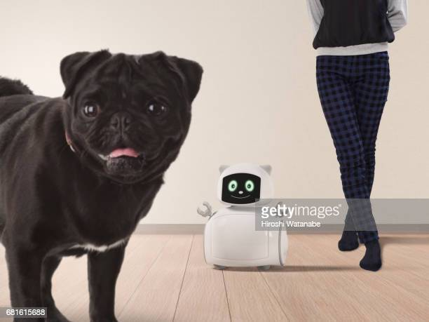 Portrait with Personal Robot and dog
