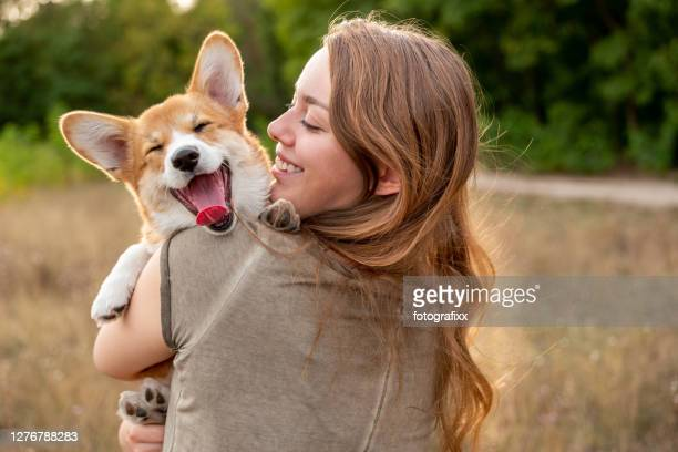 portrait: young woman with laughing corgi puppy, nature background - domestic animals stock pictures, royalty-free photos & images