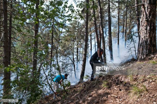 Portraits of volunteers delaying the advance of the flames in L'Aquila Italy on August 3 2020 Eight hundred hectares of mountain gone up in smoke in...