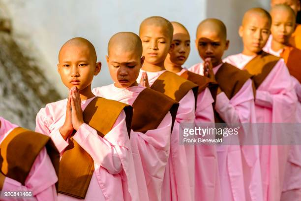 Portraits of young buddhist nuns queuing in a long row to receive donations in a monastery