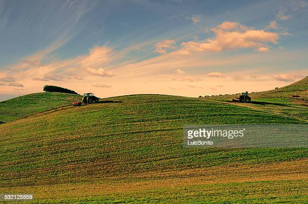 Portugal, Alentejo, Tractors working on green field