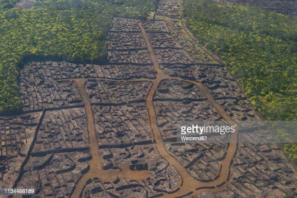 Portugal, Azores, Island of Pico, Aerial view of ancient vineyards, Landscape of the Pico Island Vineyard Culture