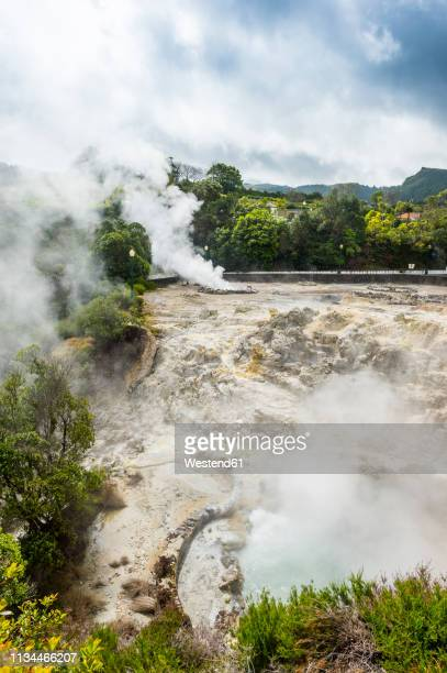 Portugal, Azores, Sao Miguel, Fumaroles in the town of Furnas