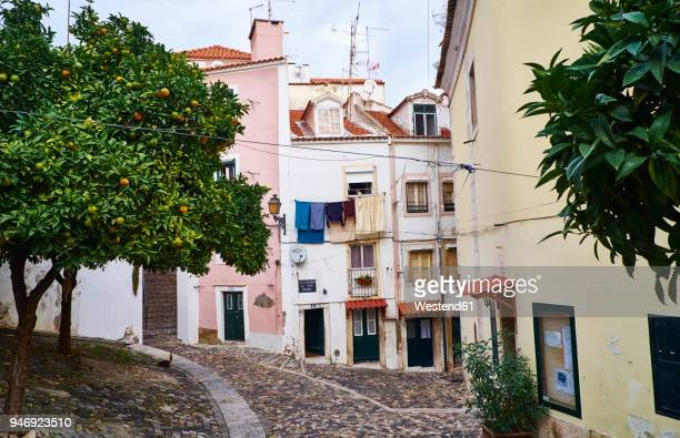portugal, lisbon, alfama, houses and orange tree - alfama stock photos and pictures