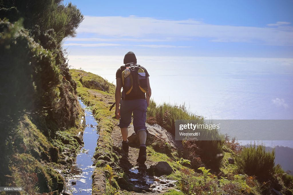 Portugal, Madeira, man on hiking trip along the Levadas : Stock Photo