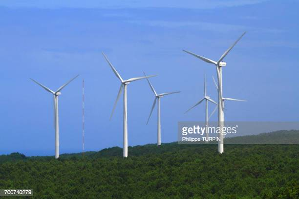 portugal, nazare. wind mill. - leiria district stock photos and pictures