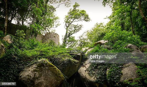 portugal, sintra, view of moorish castle - moruno fotografías e imágenes de stock