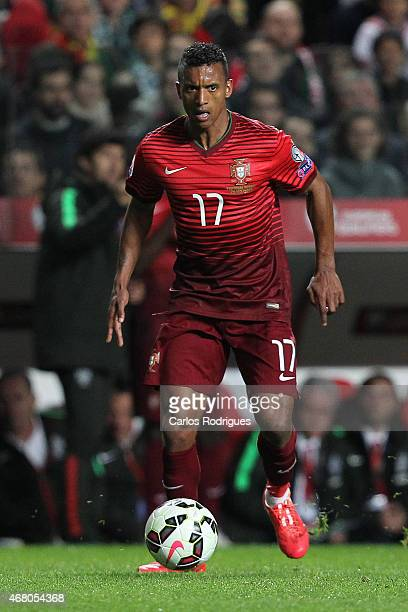 Portugal's forward Nani during the UEFA Euro 2016 Qualifier between Portugal and Serbia at Estadio da Luz on March 29 2015 in Lisbon Portugal