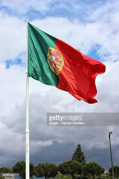 portuguese national flag - bandeira de portugal imagens e fotografias de stock