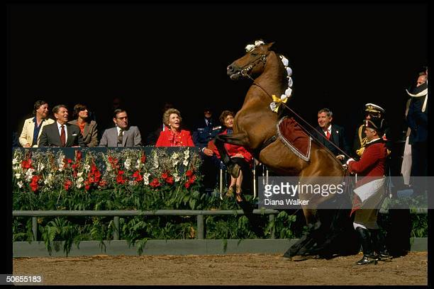 Portuguese President Antonio Eanes sitting between US President Ronald Reagan and wife Nancy durig lusitanian horse show at Quelez Palace