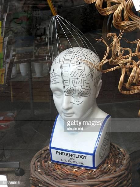 Porzellankopf mit eingezeichneten Feldern der Phrenologie mit Kopfmassagegerät zur Stimulation einzelner Zentren