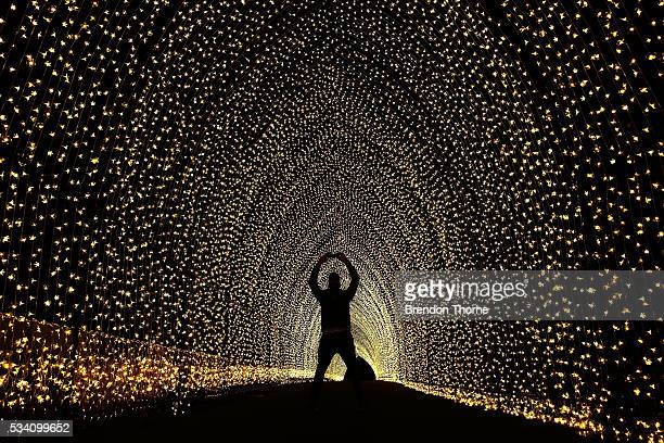 A poses for a photo inside the 'Cathedral of Light' at The Royal Botanic Gardens on May 25 2016 in Sydney Australia Held annually Vivid Sydney is the...