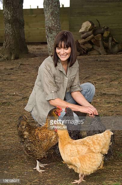 Posing Chickens