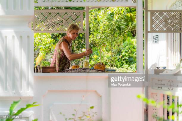 positive 55-years-old mature woman serving a table for breakfast with fresh vegetarian food. the view from outside through a window. - 55 59 years stock pictures, royalty-free photos & images