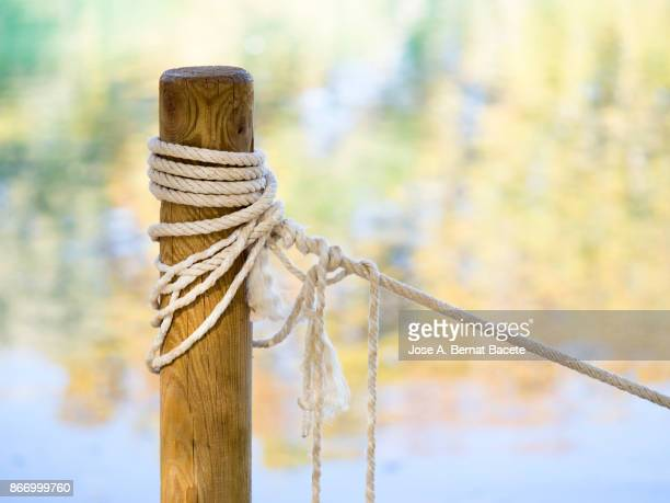 Post of wood with a tied rope and knots, to the shore of a lake with reflections of colors of the leaves of the trees in autumn. Spain