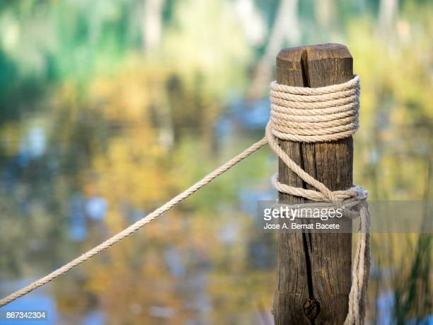 post of wood with a tied rope and knots, to the shore of a lake with reflections of colors of the leaves of the trees in autumn. spain - attraccato foto e immagini stock