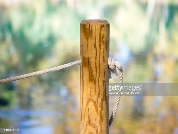 Post of wood with a tied rope and knots to the shore of a lake, with reflections of colors of the leaves of the trees in autumn. Spain