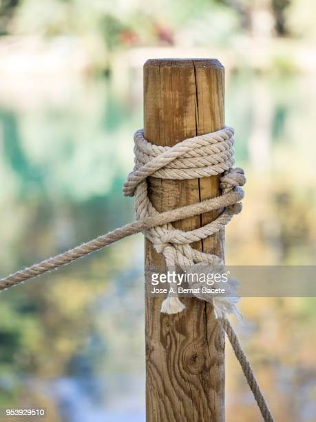 Post of wood with a tied rope and knots to the shore of a lake, with reflections of colors of the leaves of the trees in autumn.